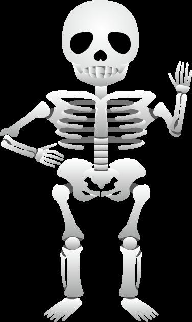 10月8日骨と関節の日のイラスト-骸骨