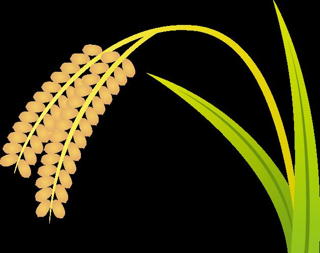 10月16日世界食糧デーのイラスト-稲穂