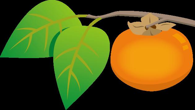 10月26日柿の日のイラスト-柿