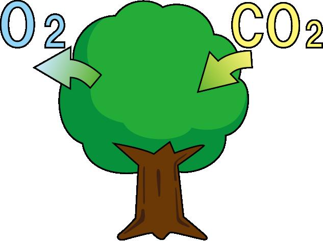 木と酸素と二酸化炭素のイラスト